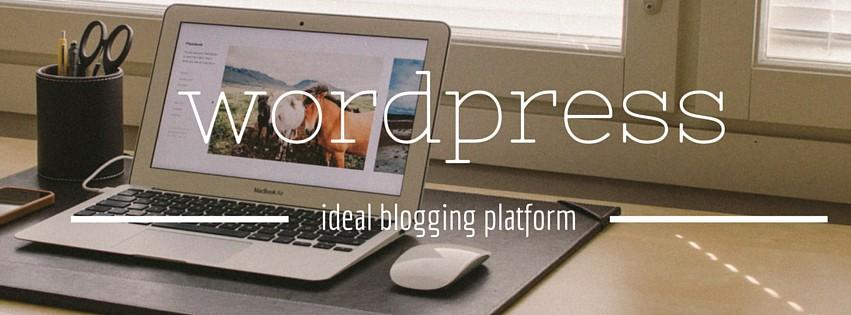 wordpress blogging platform