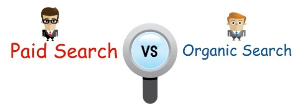 organic and paid search ranking