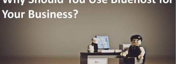 Bluehost Hosting For Your Business
